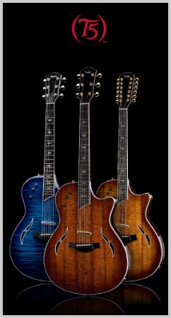 Taylor T-5 Electric Guitars